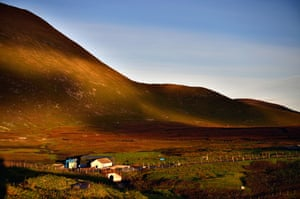 Foula means 'Bird Island' in Old Norse