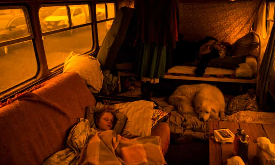 Aster Tratham-Webb sleeps by Comet the dog on the bus owned by the Tratham-Webb family on Sunday.