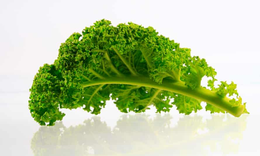 Plant up bare patches in the flowerbeds with kale.