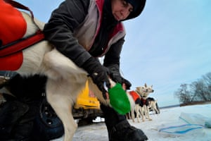Marla Brodsky fastens boots on her dog's feet to protect them from the snow and ice