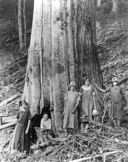 A family with a dead chestnut in Tennessee in the 1920s.