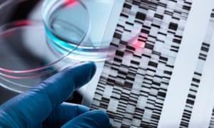 A DNA gene test.