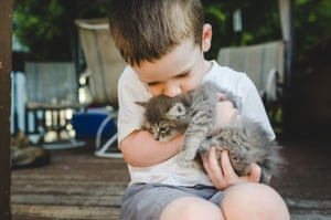 Young Child Holding And Kissing A KittenLittle boy holding and kissing a kitten