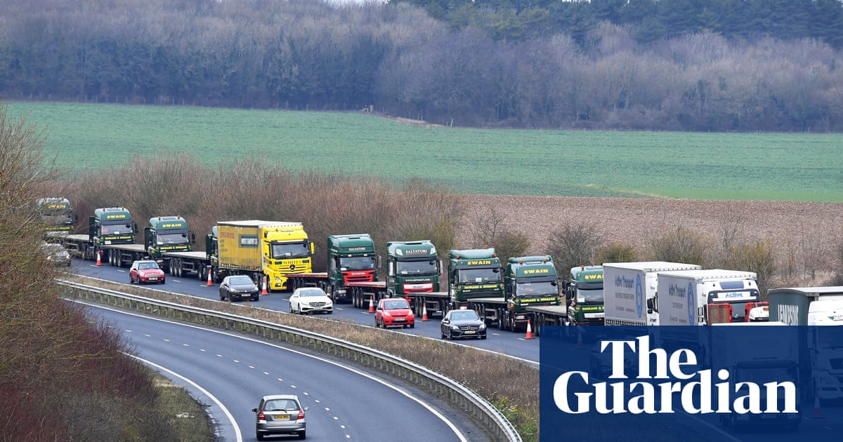 Brexit: leaked papers predict food shortages and port delays