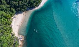 Gold Coast beach life.