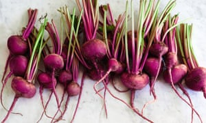 "'A homegrown beetroot is a thing of earthy beauty, and an excellent example of ""root to leaf"" eating'"
