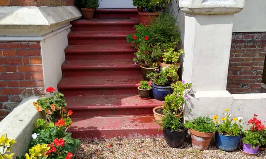 Helen Nightingale's front steps, adorned with flowerpots, in St Leonards-on-Sea