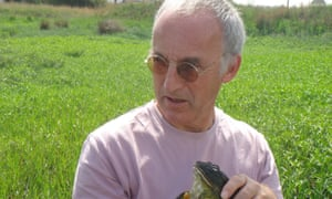 In his darker moments Tim Halliday, above with an African bullfrog, described himself as an 'extinction biologist'.