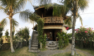 Medewi Surf Homestay, West Bali.