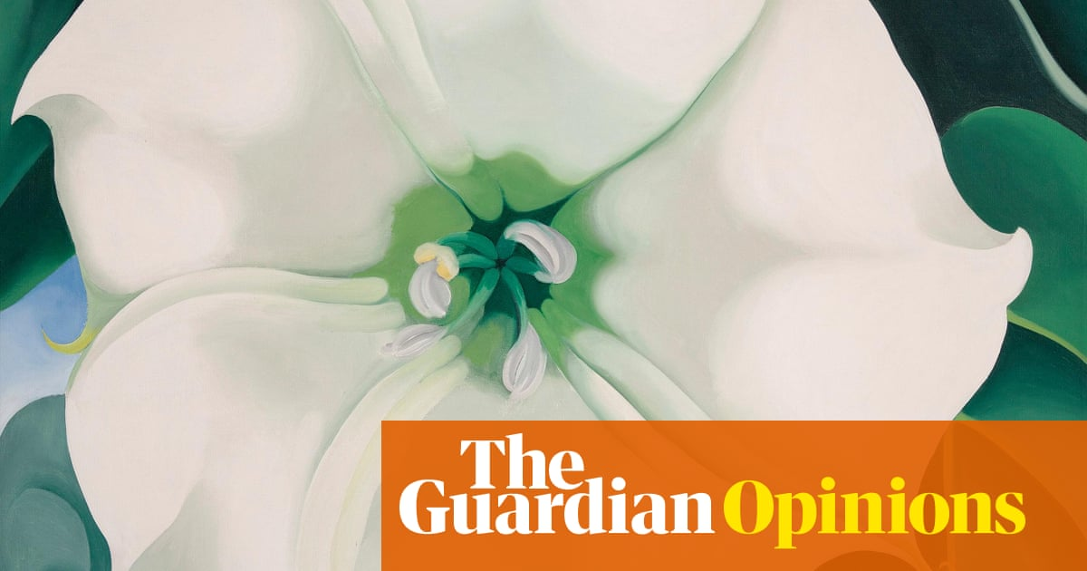 Why do girls want labiaplasty? They're told to hate every inch of themselves