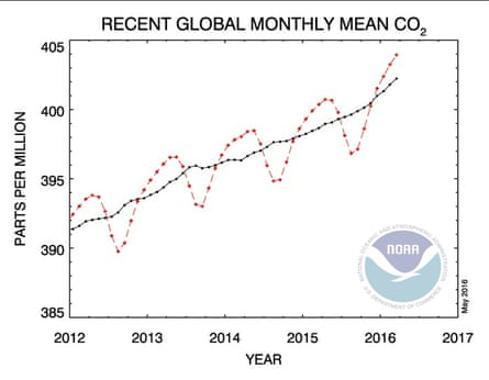 A National Oceanic and Atmospheric Administration graph of global monthly mean carbon dioxide