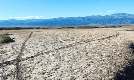 Damage to cherished landscapes across the country has made headlines throughout the month the government has been partially shuttered.