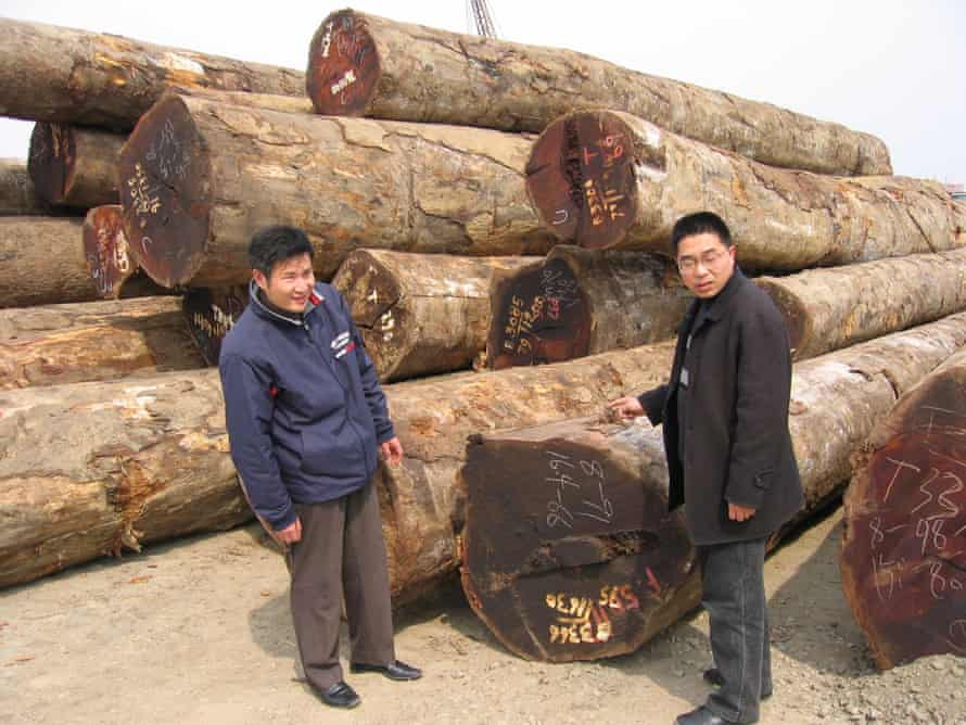 Two timber industry executives, Chen Jianping (left) and Chen Long, stand near a pile of tropical hardwood logs at a port facility in Nanxun, China. The city is hub to some 370 factories manufacturing hardwood flooring.