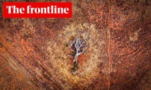 The Frontline live blog: a dead tree on a drought-hit property. Guardian Australia readers can email or tweet their questions about the climate emergency to our expert panel.