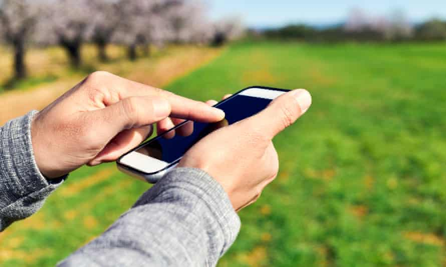 man using a smartphone in a natural landscape