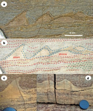 The stromatolites in figure a are from Greenland; those in c and d are younger stromatolites from Western Australia. Figure b shows the layers created by microbes as they formed the Greenland stromatolites (blue lines). 'Stroms' are several overlapping stromatolites.