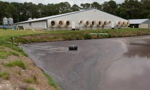 Hog waste is pumped into a lagoon at a farm near Wallace, North Carolina.