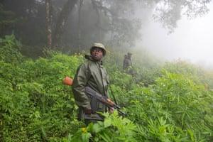 Virunga rangers are recruited from villages surrounding the park.