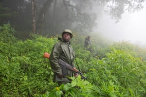 Virunga rangers are recruited from villages surrounding the park.