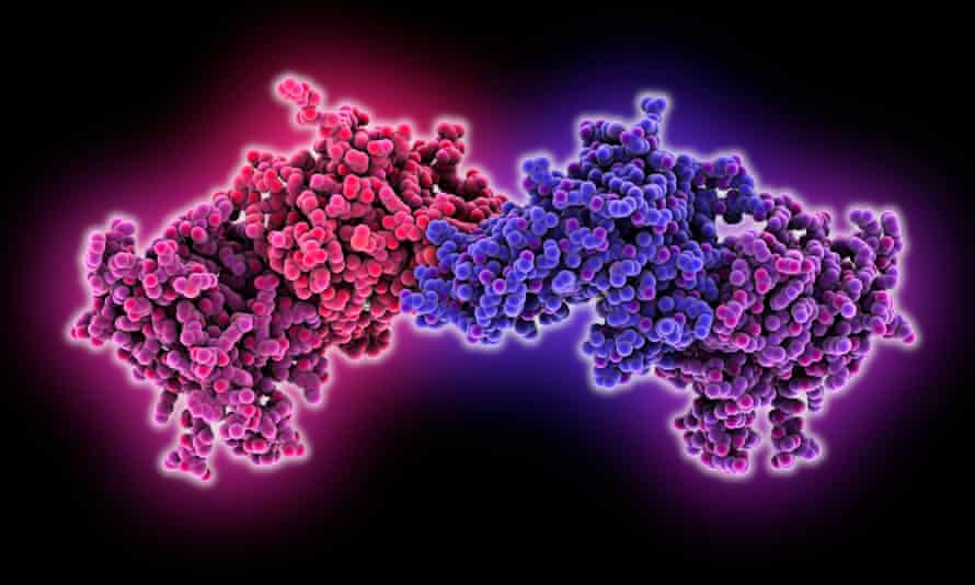 A model of DNA methylation – the process that modulates genes. The influence of environment or lifestyle on this process is being studied.