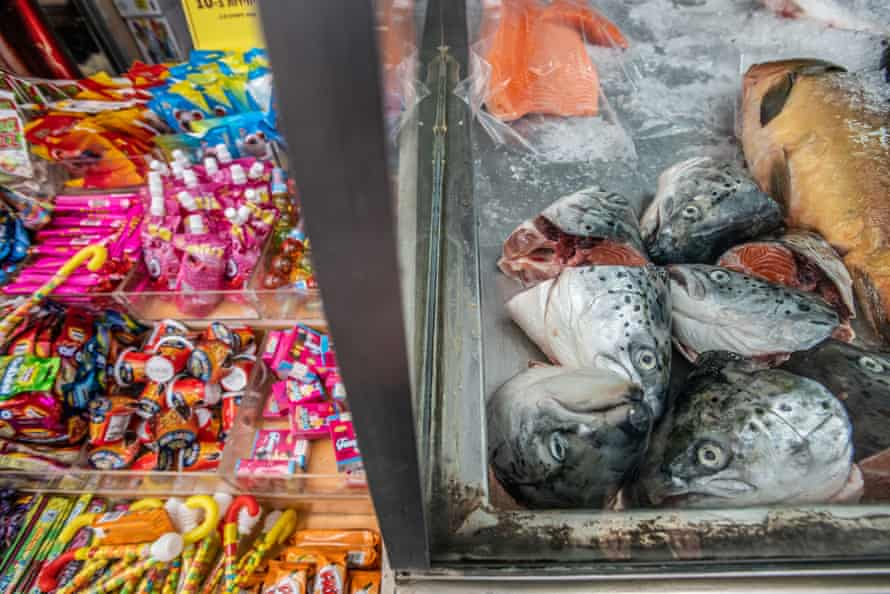 Fish for sale in a market in Israel.
