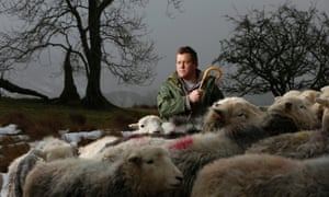 Writer and farmer James Rebanks, with his Herdwick sheep, at Racy Ghyll Farm, Cumbria.