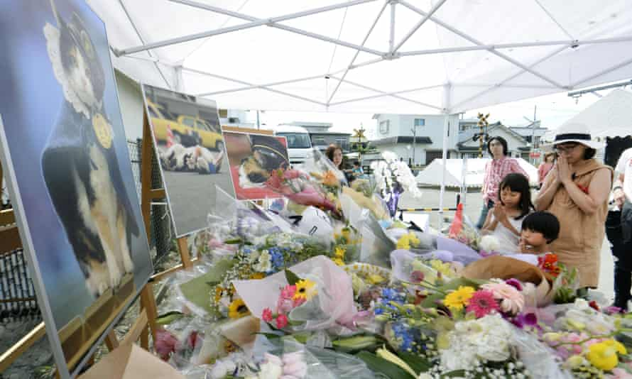 People pray in front of an altar especially set up Tama's funeral in Kinokawa City, Wakayama prefecture.