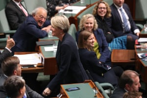 Tanya Plibersek leaves the house under standing order 94A