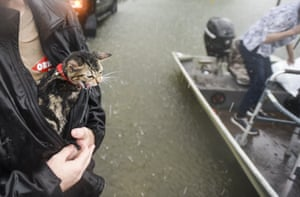 Levi Kelley's cat, named Cat, meows as Kelley shelters him from the rain with his jacket.