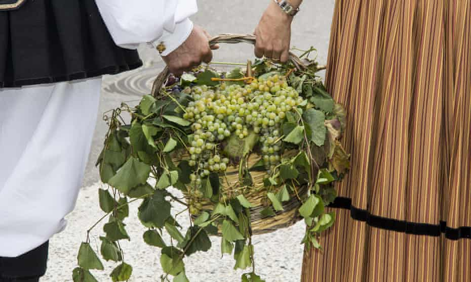 basket of grapes. Image shot 08/2016. Exact date unknown.M49067 basket of grapes. Image shot 08/2016. Exact date unknown.