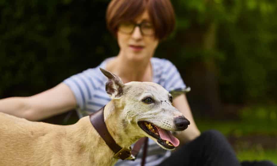 Oscar instagram dog star. Owner of Emma Beddington