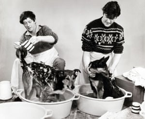 Peter Purves & John Noakes wash the dogs 1967