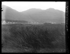 Photo of Arrochar, near Loch Long in Scotland in 1928, taken by British botanist Sir Edward James Salisbury (1886-1978)
