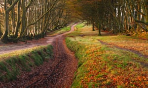 Crossing paths … the Quantocks, Somerset, where Wordsworth walked with Coleridge.