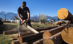 Jack Walker, a tree care specialist, cuts firewood to be donated to the Water Protectors.