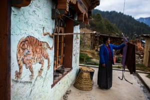 Tiger iconography in a village in Wangdue Phodrang District, Bhutan.