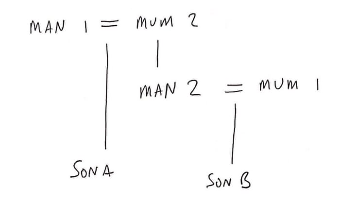 Did You Solve It The World S Strangest Families Mathematics The Guardian