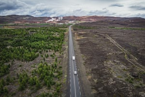 Reforestation in Iceland