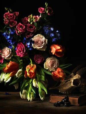 dama gazelle skull and flowers