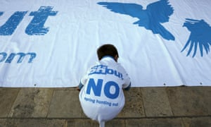 A boy arranges a banner on the ground during a Spring Hunting Out rally in the run-up to a referendum last year that narrowly rejected banning the event