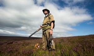 Grouse shooting on the North York Moors