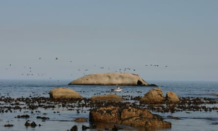 Barley Bay Bakoven-Rock