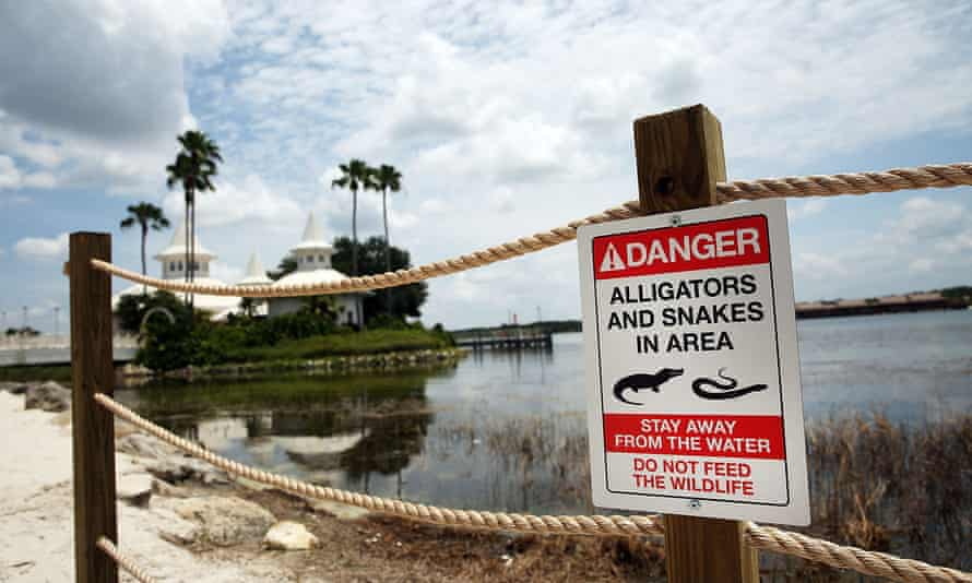 Newly installed signs warn of alligators and snakes on a closed section of beach following the death of 2-year-old Lane Graves who was killed by an alligator near a Walt Disney World hotel on June 18, 2016 in Orlando, Florida.