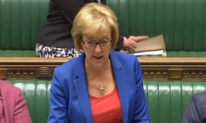 The plan was detailed by Andrea Leadsom, the Conservatives' leader of the Commons.