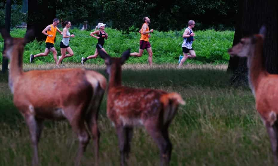 Participants at a parkrun in London's Bushy Park in July