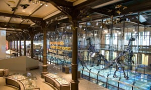 brussels museum 2