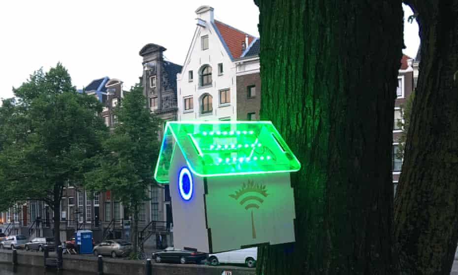 The TreeWifi birdhouse