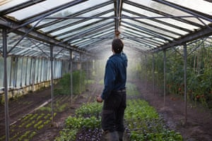 The greenhouse at work: irrigating the crops. All the water for irrigation comes from the farm's own spring.