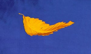 Inspired … a detail from Peter Saville's cover for True Faith, 1987.
