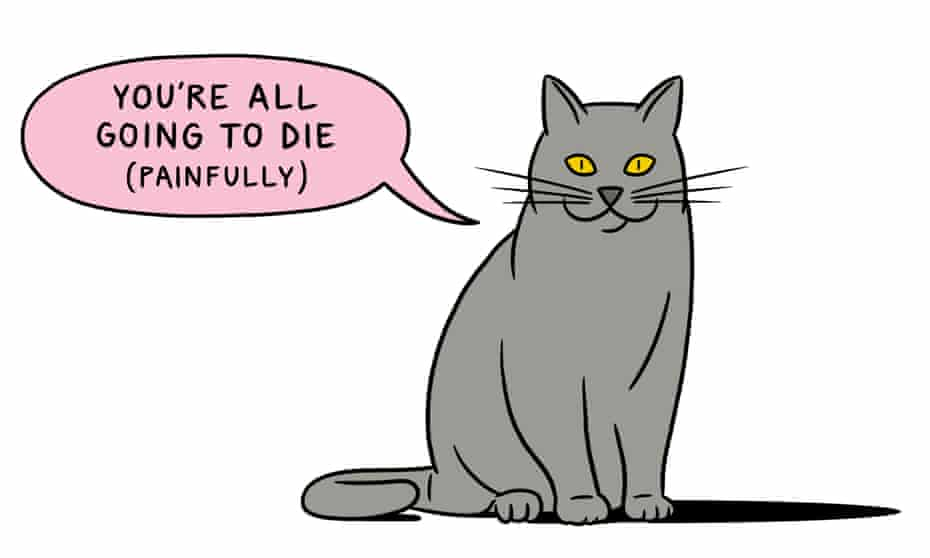 Pet a Cat - digested read illustration for 12 Rules for Life